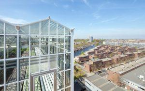 Rooftop Greenhouse UrbanFarmers